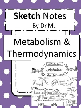 Thermodynamics Sketch Notes Doodle Notes