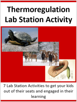Thermoregulation - Protein Synthesis - 7 Lab Station Activities