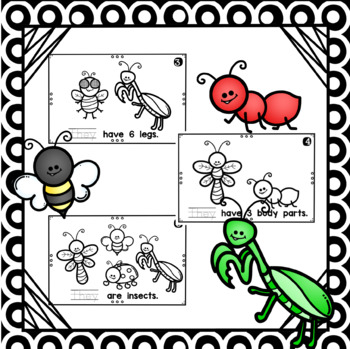 They Are Insects- emergent reader
