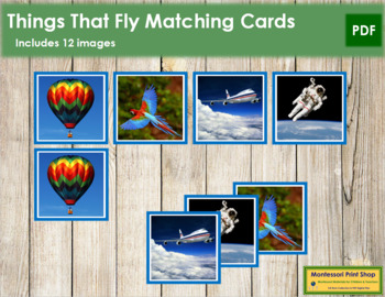 Things That Fly Photo Matching Cards