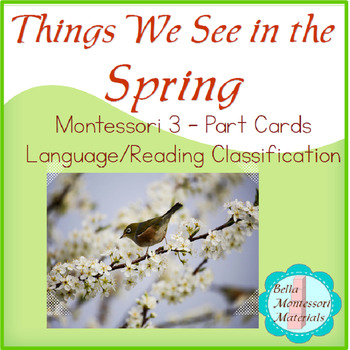 Things We See In The Spring - Montessori 3 - Part Cards