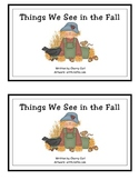 Things We See in the Fall Guided Reading Book