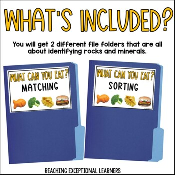 Eat This, Not That- File Folder Activity- Special Education