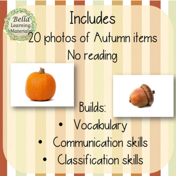 Things You See In The Autumn - Montessori Classified Cards