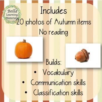 Autumn Montessori Classified Cards