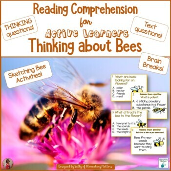 Thinking About Bees   Reading Comprehension for Active Learners