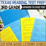 Third Grade A TEK-a-Day Reading Test Prep & Review, 1st Ni