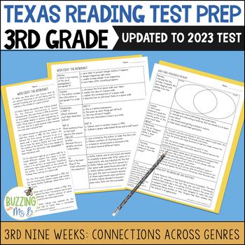 Third Grade A TEK-a-Day Reading Test Prep & Review, 3rd Nine Weeks