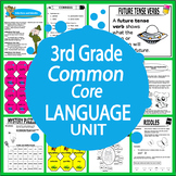 3rd Grade LANGUAGE Unit (Posters, ELA Games + 16 Third Grade Grammar Lessons)