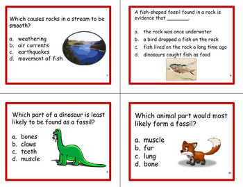 Third Grade Science Review