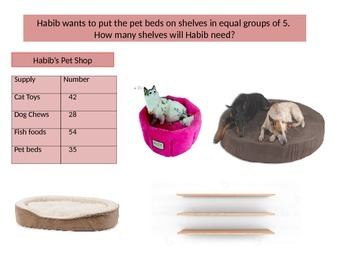 Third Grade Chapter 7 Math Performance Task