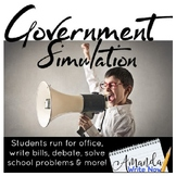 Government Simulation