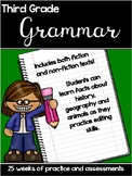 Third Grade Grammar practice and assessments