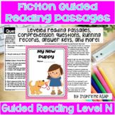 Third Grade Guided Reading Level N
