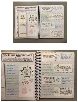 Third Grade Interactive Science Journals - Mystery Science (Power of Flowers)