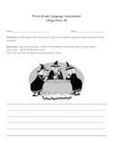 Third Grade Language Assessment (Adjectives)