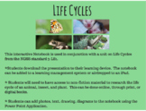 Third Grade Life Cycles Interactive Power Point Notebook N