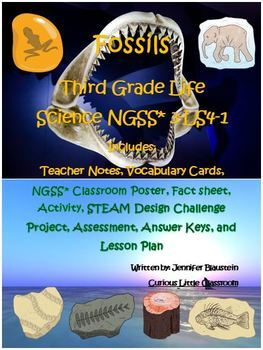 Third Grade Life Science- Fossils