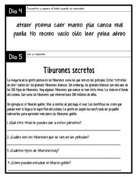 Third Grade Morning Work for January in Spanish