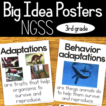 Third Grade NGSS Big Idea Posters - Essential Idea Posters