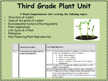 Third Grade Plant Unit
