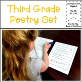 Distant Learning Packet -3rd Grade Poetry Set