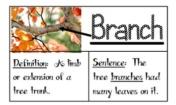 Third Grade Ready Gen Unit 1 Module B At the Root of It Vocabulary
