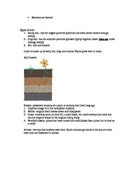 Third Grade Science CRCT Study Guide
