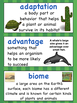 Third Grade Science:  NGSS Vocabulary for Your Word Wall