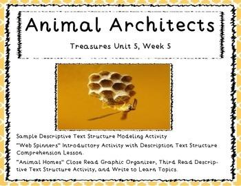 "Third Grade Treasures Unit 5 Week 5 ""Animal Architect"" Unit"
