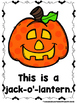 This is Halloween  (A Sight Word Emergent Reader and Teacher Lap Book)