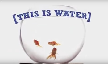 This is Water - David Foster Wallace - Short Film Comprehe