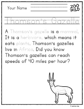 Thomson's Gazelle -- 10 Resources -- Coloring Pages, Reading & Activities