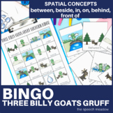 Three Billy Goats Gruff Bingo   Spatial Concepts