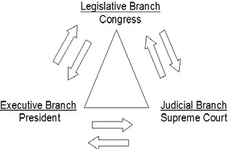 Three Branches of Government Game
