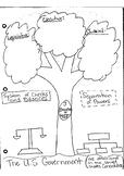 Three Branches of Government Graphic Organizer