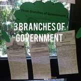 Three Branches of Government Project!