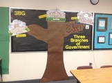 Three Branches of Government Unit ~ 3BG