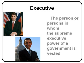 Three Branches of Government Word Wall