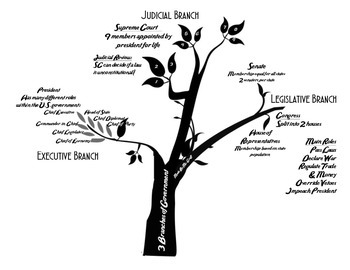Three Branches of U.S. Government Tree Diagram