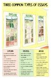Three Common Types of Essays Poster