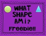 Three Dimensional Shape Freebie!!!