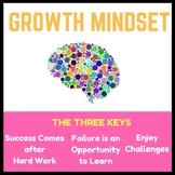 The Three Keys to a Growth Mindset - Presentation, Activit
