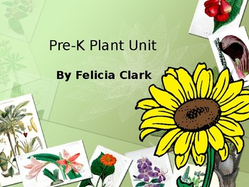 Plant Vocabulary Words