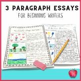 3 Paragraph Writing