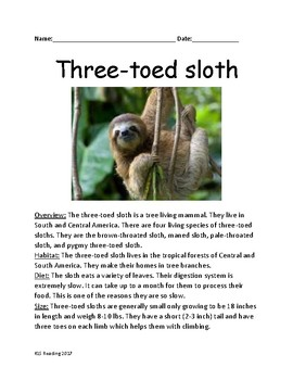 Three Toed Sloth - informational article facts questions worksheet review
