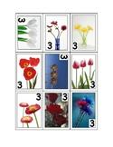 Life Skills: Three or Five Flowers