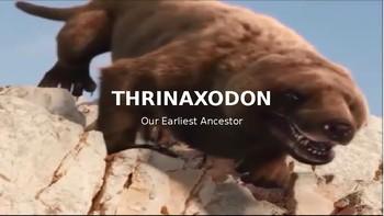 Thrinaxodon
