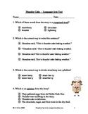 Thunder Cake Language Arts Test/Quiz ~ Houghton Mifflin® ~ 2nd Grade
