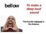 Thunder Cake Vocabulary Cards